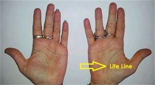 life palmistry