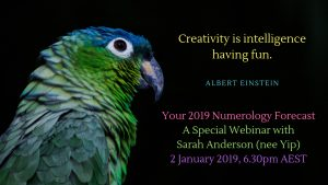 coloured parrot numerology webinar